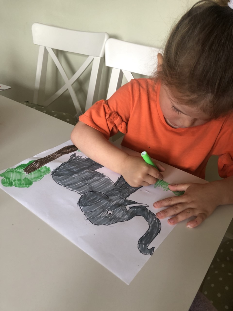 RE at home - drawing an animal that God created after watching the Creation story animation